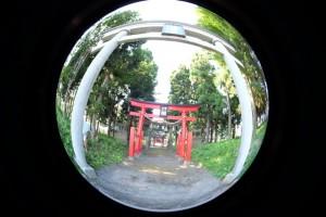 2015.8.29の散歩_2