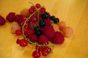 FruitJam_2016.7.18_1