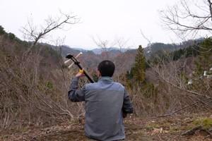 外練習_春間近な山